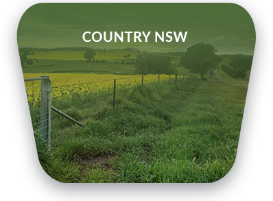 country nsw removalist