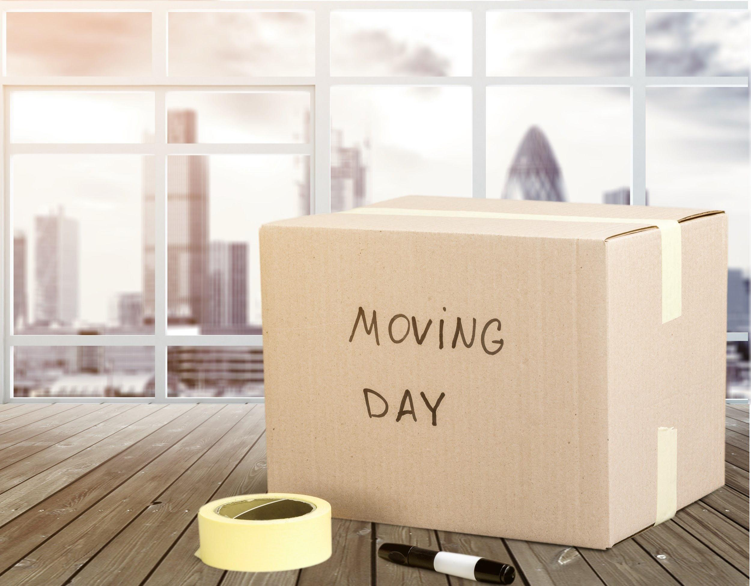 Sydney to Central Coast movers
