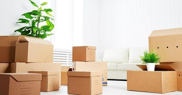 Brisbane to Sydney removal services