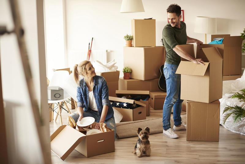 removalists South Sydney